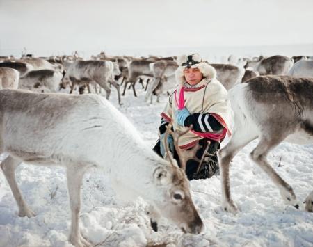 sami-reindeer-herder-615.jpg