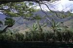 mpora view