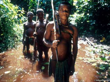The pygmies in the rain forest in Democratic Republic of the Congo (DRC), going to hunt